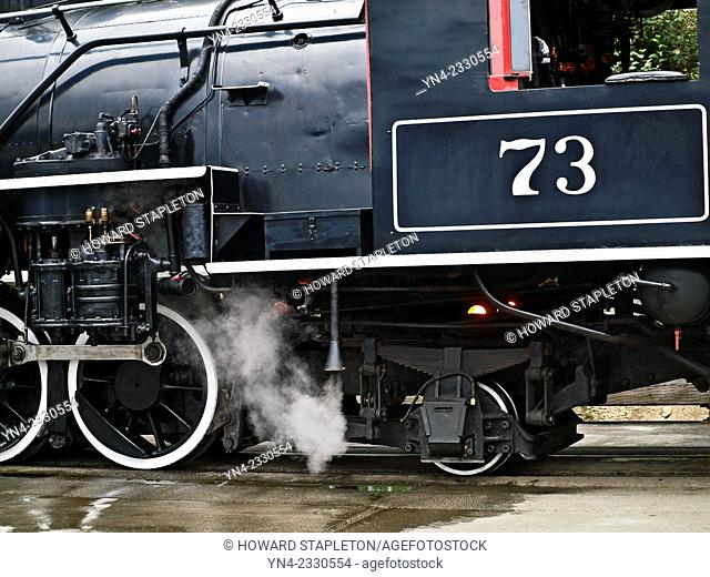 Steam engine No. 73 of the White Pass and Yukon Route Railroad at Skagway, Alaska. The steam Engine No. 73 is a 2-8-2 Mikado type Baldwin Locomotive built in...