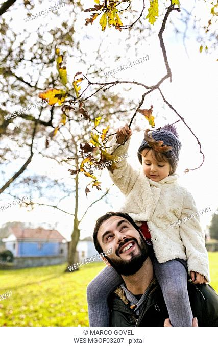 Little girl on shoulders of her father in autumnal park