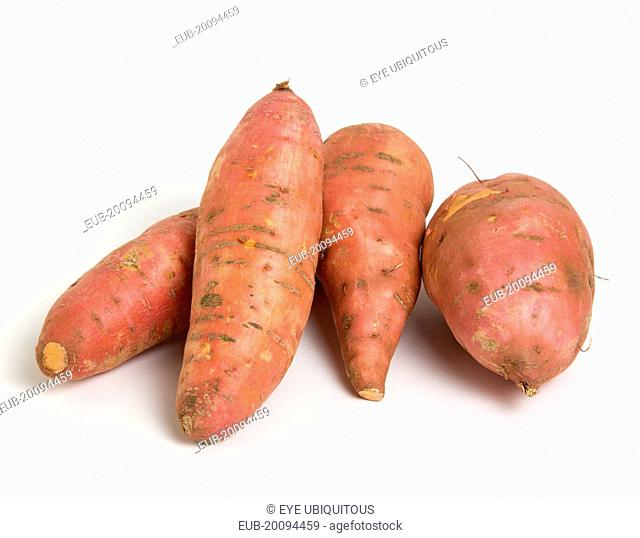 Group shot of orange North American sweet potatoes on a white background
