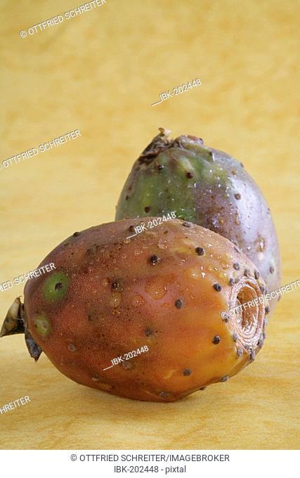 Prickly pears (Opuntia ficus-indica)