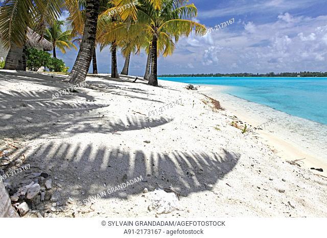 French Polynesia, Windward islands archipelago, bora bora island