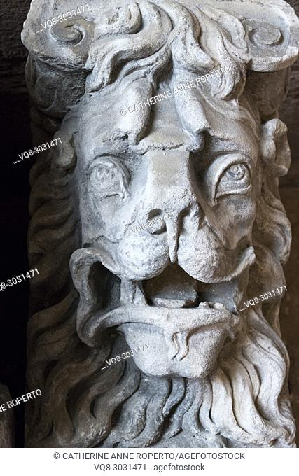 Stone lion gargoyle head with a wild mane, roaring ferociously outside Hereford Cathedral, Hereford, England