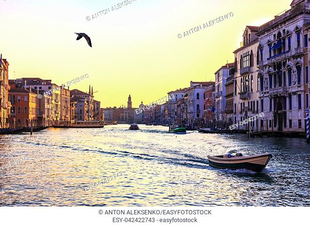 Grand Canal of Venice, beautiful view near the Rialto Bridge