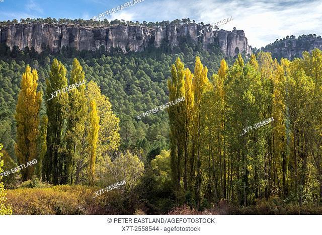 Autumn in the Hoz Del Beteta gorge. In the Serrania de Cuenca, Cuenca province, Castilla-la mancha, Central Spain