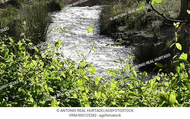 Ruidera lagoon Natural Park. Albacete province. Spain