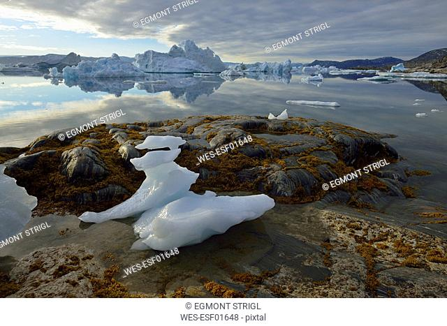 Greenland, East Greenland, view from Sarpaq over the icebergs of Sermilik fjord
