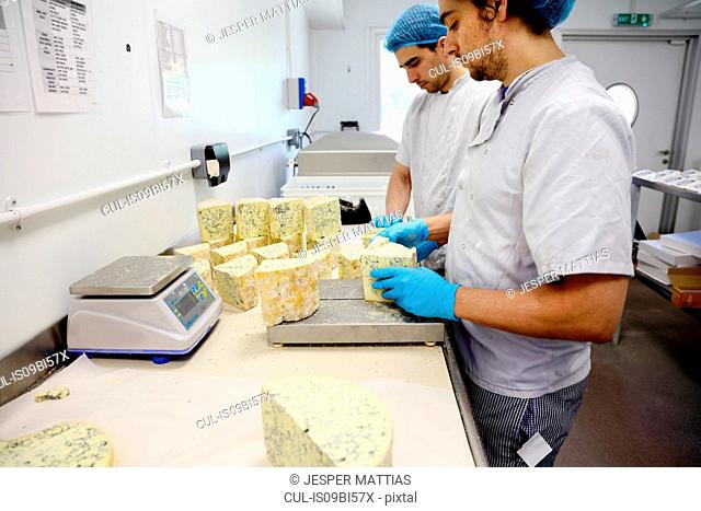 Cheese makers cutting blocks of blue stilton to package and send off to wholesalers