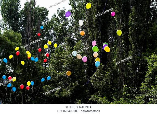 balloons in the sky against trees, the last call school, a holiday