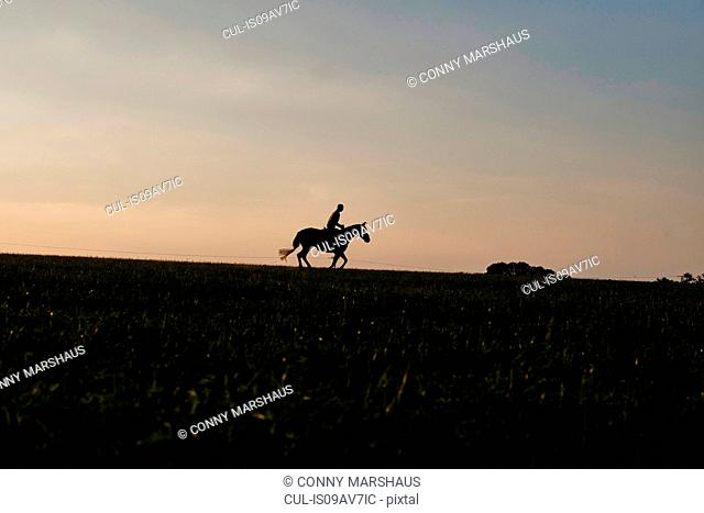 Silhouetted view of woman riding horse in field