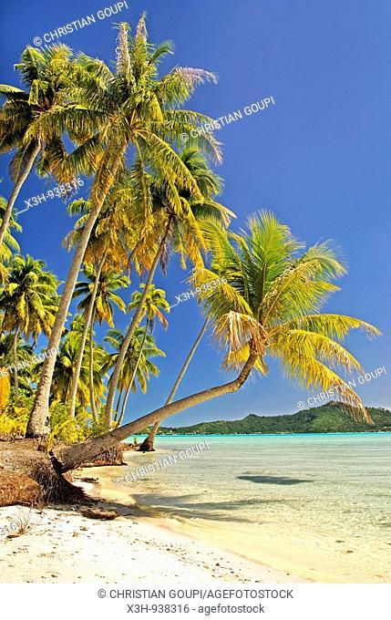 Bora-Bora,iles de la Societe,archipel de la Polynesie francaise,ocean pacifique sud