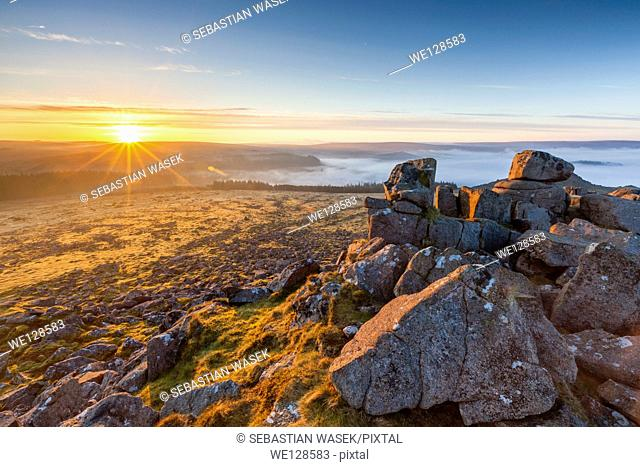 Sharpitor, Dartmoor National Park, Sheepstor, West Devon, England, UK, Europe