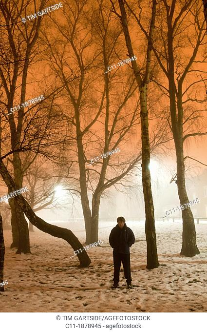 winter fog with trees at night, Biggin Hill, Kent, England, UK, Europe
