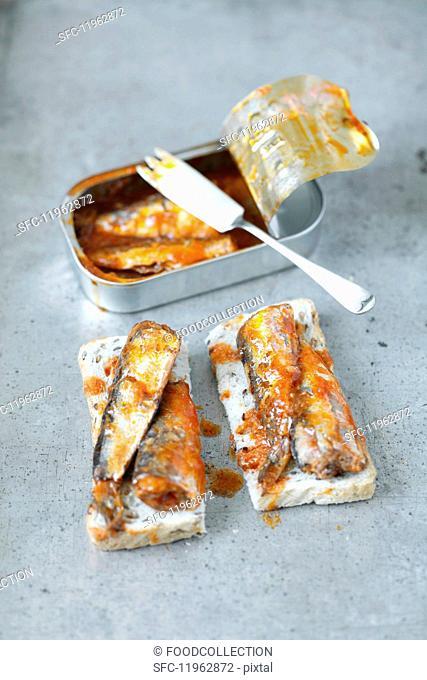 Toast with sardines in tomato sauce