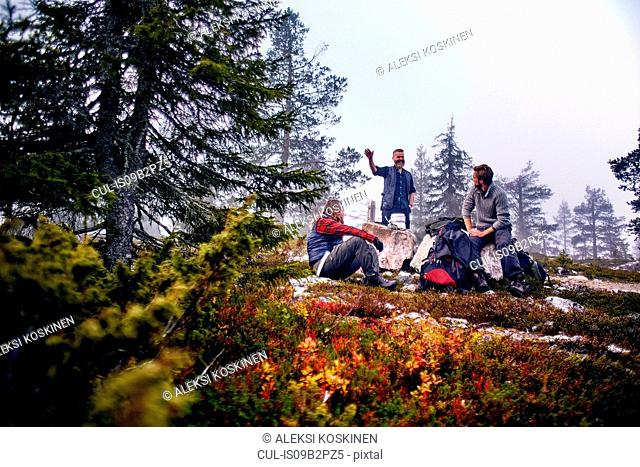 Hikers relaxing and chatting in park, Sarkitunturi, Lapland, Finland
