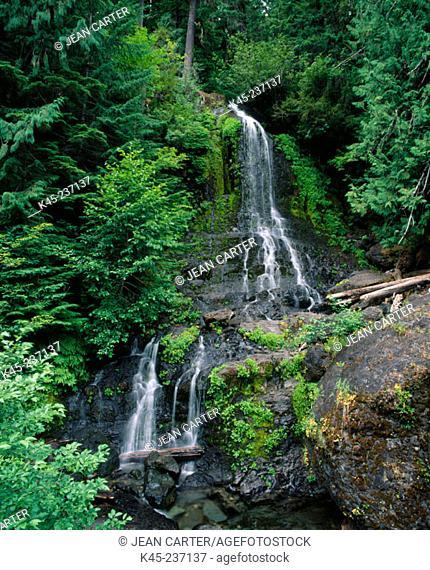 Twin Falls Creek, Mount Rainier National Park, Washington, USA