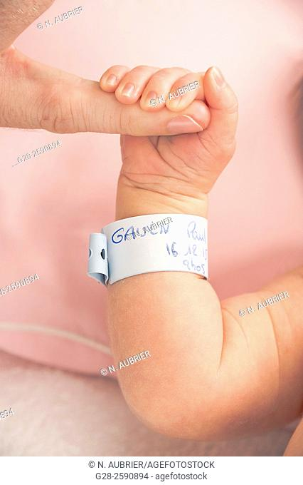 Adult, father's finger holding baby boy 's hand and arm with birth identification name band