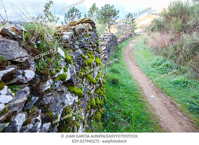 Villuercas geopark trail, Caceres, Extremadura, Spain. Old stone wall full of moss