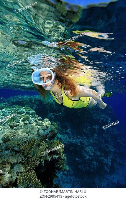 Schnorchlerin und Korallenriff bei Ras Nasrani, Sharm el Sheikh, Ägypten, Rotes Meer, Woman snorkeler explores coral reef of Ras Nasrani, Sharm el Sheikh