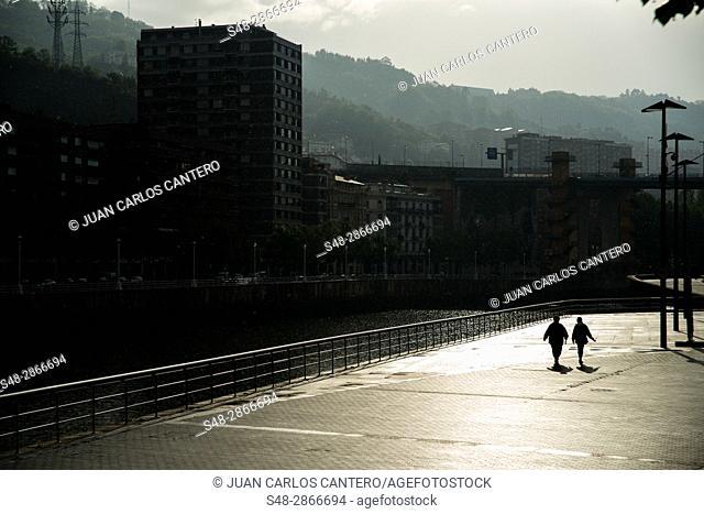 Paseo de Abandoibarra en Bilbao. Vizcaya. Basque Country. Spain. Europe