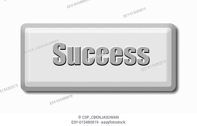 The Computer keyboard key of success isolated on white background