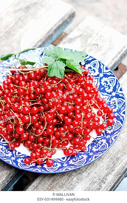 Ripe organic red currants on the plate