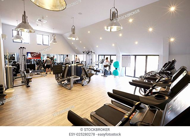 Young Men And Women Excercising In Gym