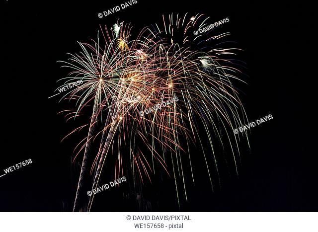 Beautiful fireworks display fills the night time sky