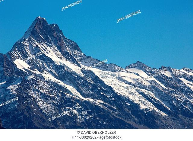 The Alps, mountains, the Bernese Oberland, autumn, sceneries, Niederhorn, Schreckhorn, Switzerland