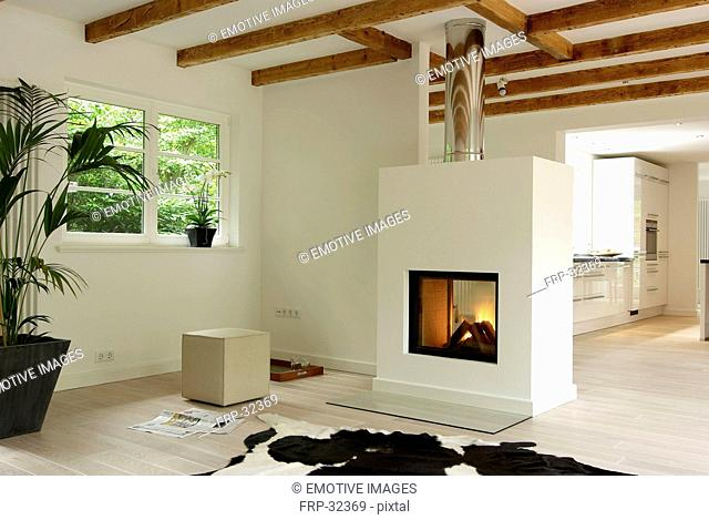 Modern bright living room with fireplace