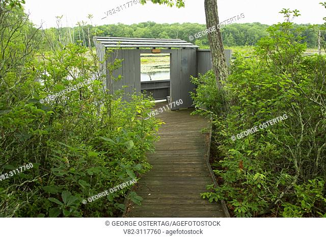 Waterfowl Blind along Beaver Pond Trail, Session Woods Wildlife Management Area, Connecticut