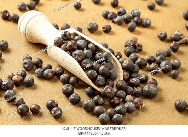 Juniper berries (Juniperus)