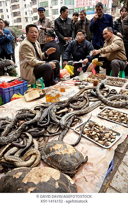 A street vendor selling snake medications to the local people of Guilin China