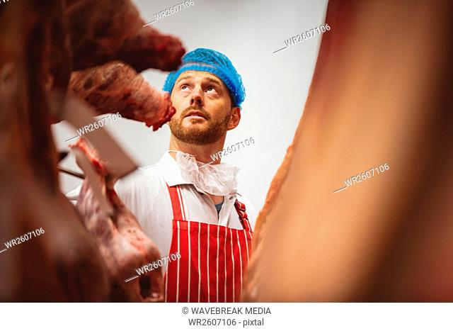 Butcher looking at the red meat hanging in storage room