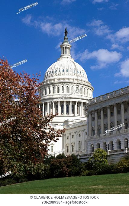 The US Capitol Building dome framed by fall foliage in Washington, DC