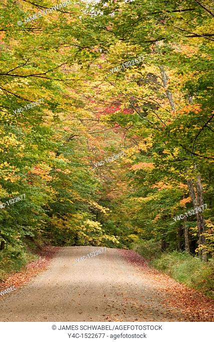 Fall color on Big Moose Road in the Adirondack Mountains of New York State
