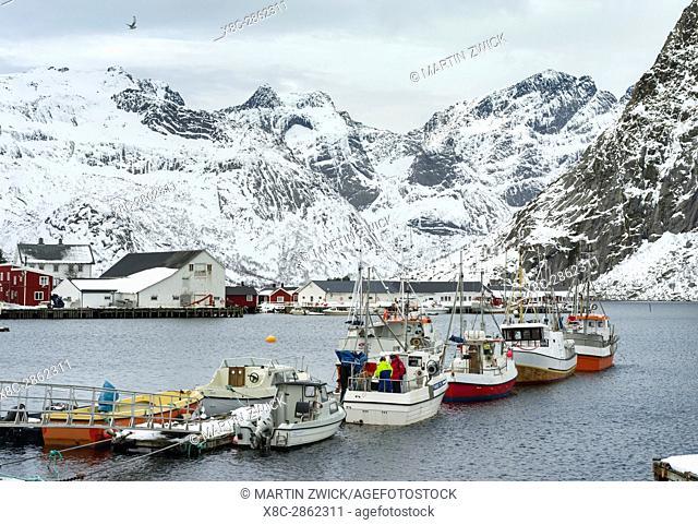 Hamnoya near village Reine on the island Moskenesoya. The Lofoten Islands in northern Norway during winter. Europe, Scandinavia, Norway,February