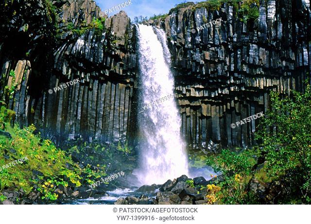 Svartifoss Waterfall, Iceland
