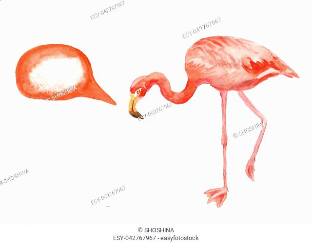 Watercolor image of pink flamingo on white background. Image has speech bubble for your text