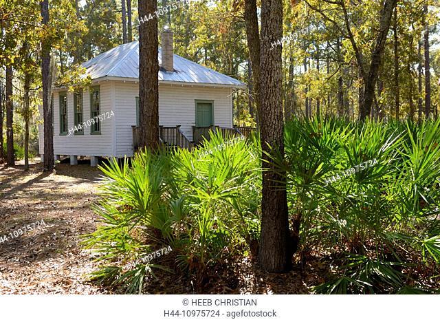 USA, Florida, Gainesville, Kanapaha, Botanical Garden