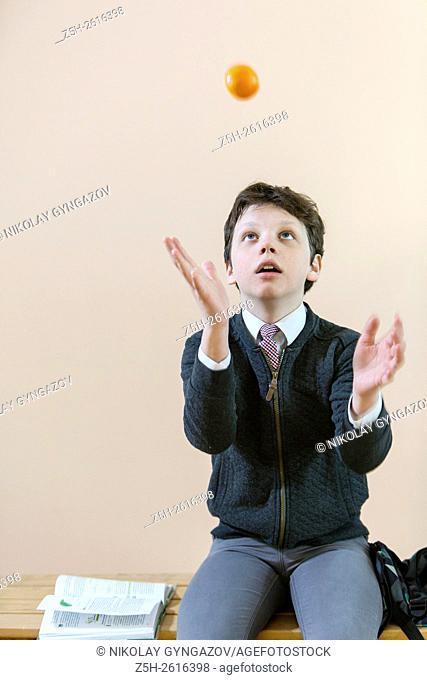 Russia. Belgorod region. Village Solomino. The boy twelve years preparing for school