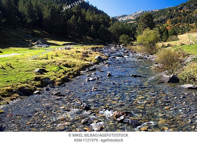 Noguera Pallaresa river near Montgarri Sanctuary  Aran Valley  Pyrenees mountain range  Lerida province  Catalonia, Spain, Europe