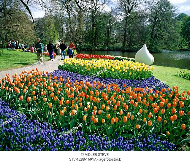 Flowers, Garden, Gardens, Group, Holiday, Keukenhof, Lake, Landmark, Lisse, Netherlands, Park, Stroll, Strolling, Tourism, Trave