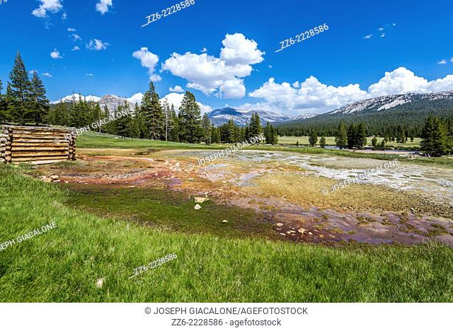 View of Soda Springs at Tuolumne Meadows. Yosemite National Park, California, United States
