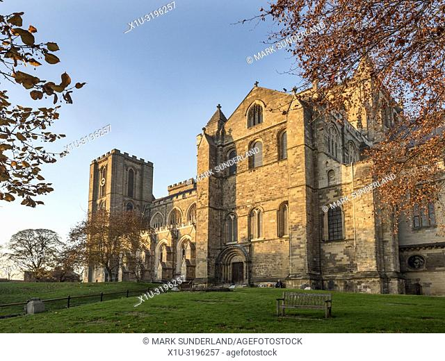 Ripon Cathedral at sunset in autumn Ripon North Yorkshire England