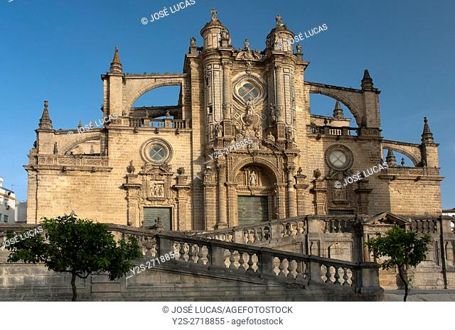 Cathedral of San Salvador - 17th century, Jerez de la Frontera, Cadiz provincia, Region of Andalusia, Spain, Europe