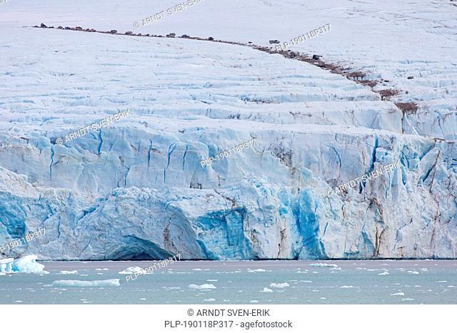 Debris on top of Smeerenburgbreen, calving glacier near Reuschhalvøya, Bjørnfjorden, inner part of Smeerenburgfjorden, Svalbard, Norway