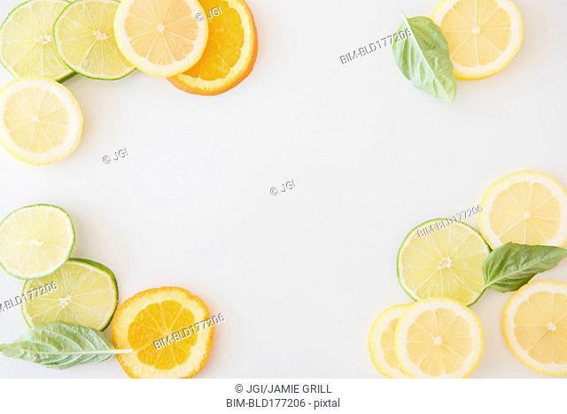 Orange, lemon and lime slices