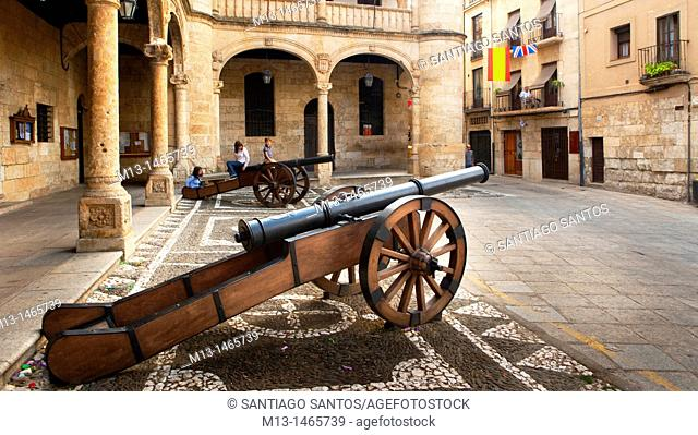 Cannons in front of the City of Ciudad Rodrigo. Salamanca. Castilla y León. Spain. Europe