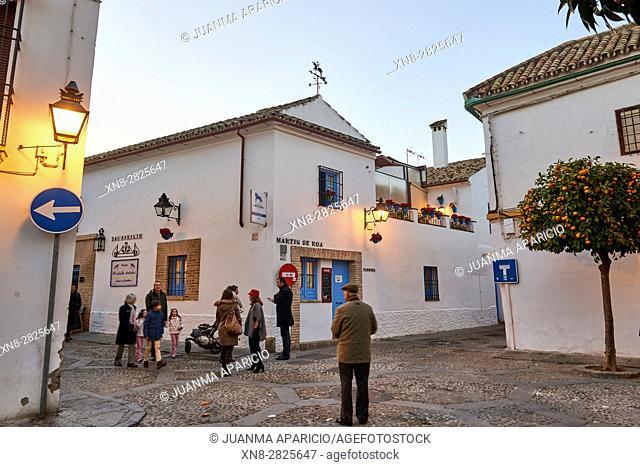 Córdoba, Andalusia, Spain, Europe