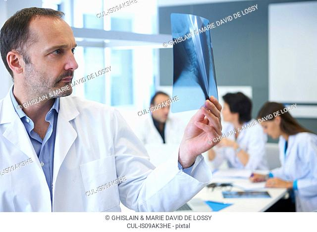 Male doctor looking at x-ray, colleagues having discussion behind